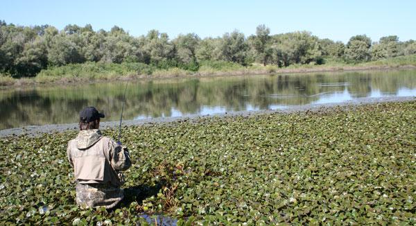Спиннинг – не раскрытые возможности. Ловля на заросших водоемах.